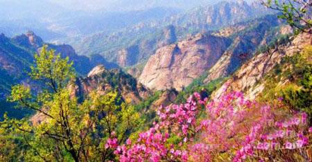 山路一转,云蒙山自然风景区的山门闪入了视线.